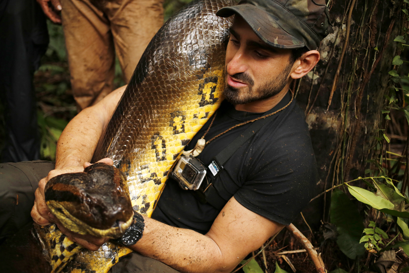 "In this undated image released by the Discovery Channel, naturalist Paul Rosolie from the special ""Eaten Alive,"" poses with a snake. The program drew more than 4 million viewers on Sunday, Dec. 7. (AP Photo/Discovery Channel, Mohsin Kazmi)"
